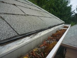 Debris Noted on a Roof Inspection on this North East Salem Oregon Gutter