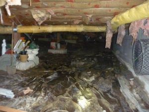 Standing water in the crawlspace of this South Salem Home