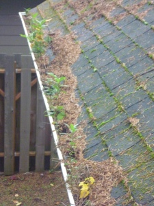Plugged gutter on a home in Keizer, Oregon noted on a home inspection