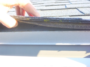 Salem, Oregon home inspection showing a multi layer roof
